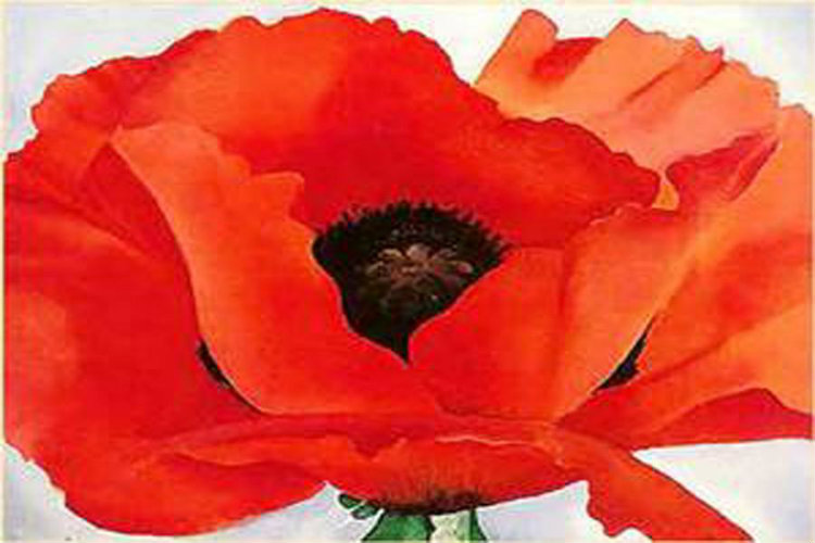 Georgia O Keefe Red Poppy