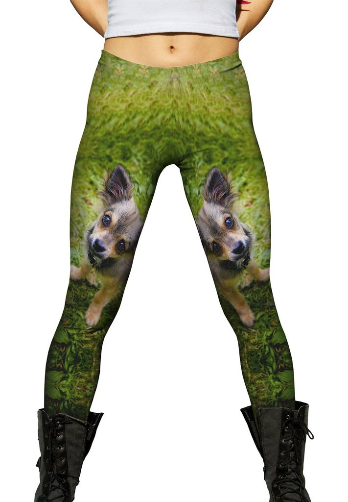 I didn't do it pup womens leggings