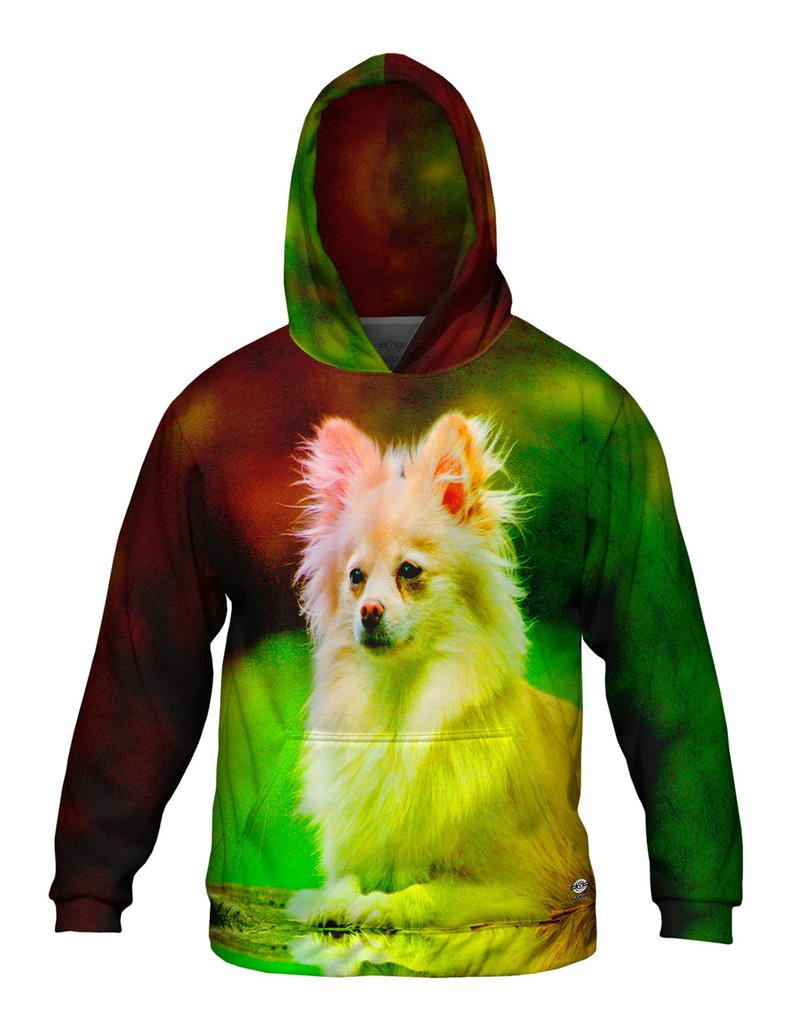Pommeranian Puppy Mens Hoodie